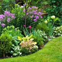 Landscaping Chislehurst