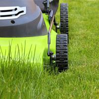 Lawn Mowing Chislehurst