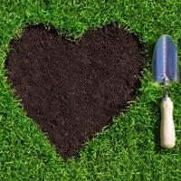 Lawn Repair Chislehurst