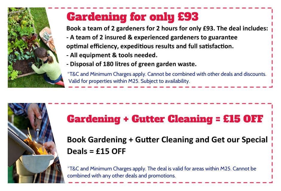 Gardeners Chislehurst Offer